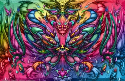 butterflyevolution_800x521