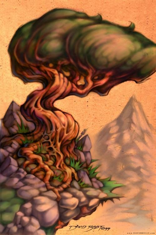 tree_800x1200