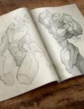 David Bollt bodybuilder sketch art